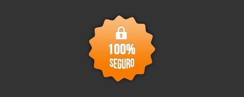 Pago 100% seguro